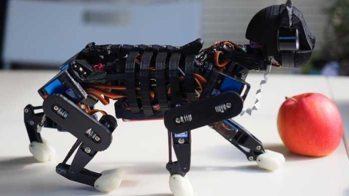 Petoi: Roboterkatze