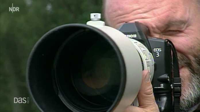 Mediathek-Tipps zum Thema Fotografie.