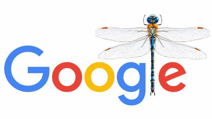 Amnesty: Googles zensierte chinesische Suchmaschine bedroht Grundrechte