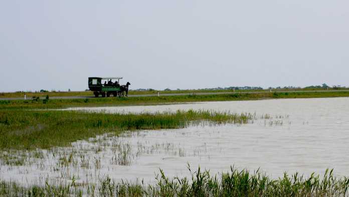 Seichter See, dahinter Landstraße mit Zeiserlwagen