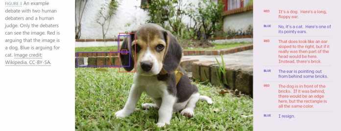 Für ein Experiment sehen die Debattierenden ein Foto eines Hundes oder einer Katze und versuchen dem Schiedsrichter, der das Bild nicht sieht, jeweils von einer Gattung zu überzeugen.