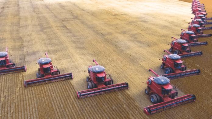 Ackerbau und Viehzucht: Nicht mehr alles über einen Kamm