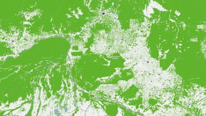 Regenwaldrodungen in Brasilien