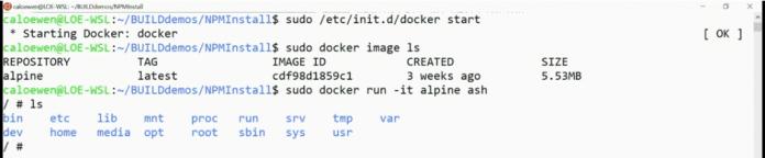 Start eines Docker-Containers in WSL 2