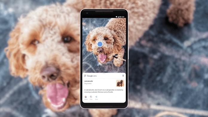 AR-Funktionen für die Google-Suche und neue Funktionen für Google Lens