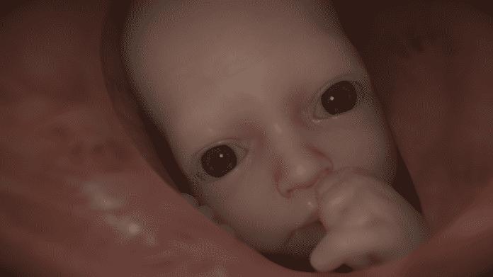 """Zu dem Baby (""""BB""""), das man fast immer mitführt, baut man schnell eine emotionale Verbindung auf."""