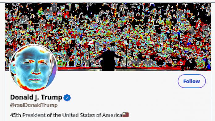 Farblich veränderter Screenshot von Trumps Twitter-Profil