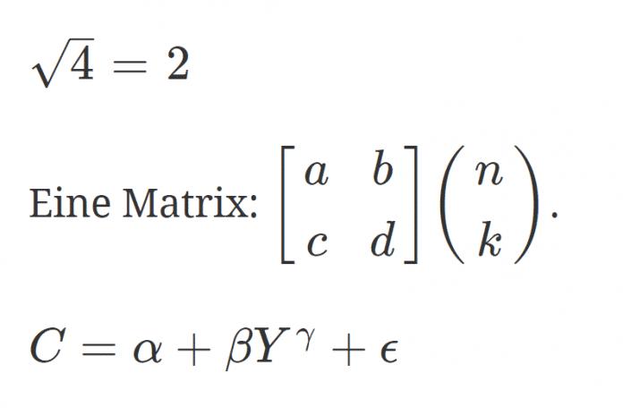 Darstellung der Formeln in der Ausgabe (Abb. 4)