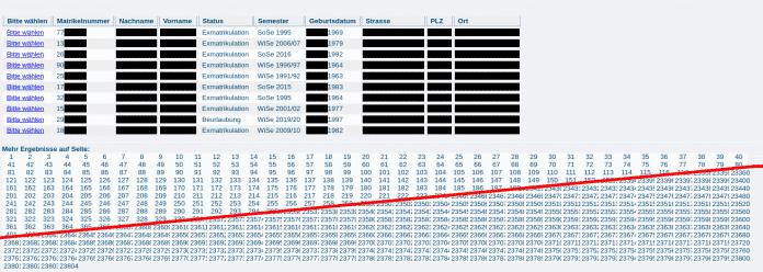 Screenshot der einen Auszug der abrufbaren Daten mit Schwärzungen zeigt.