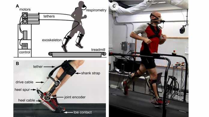 Exoskelette für mehr Lust am Laufen