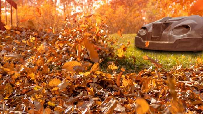 Blowie: Autonome Laubbläser mit Benzinantrieb vorgestellt