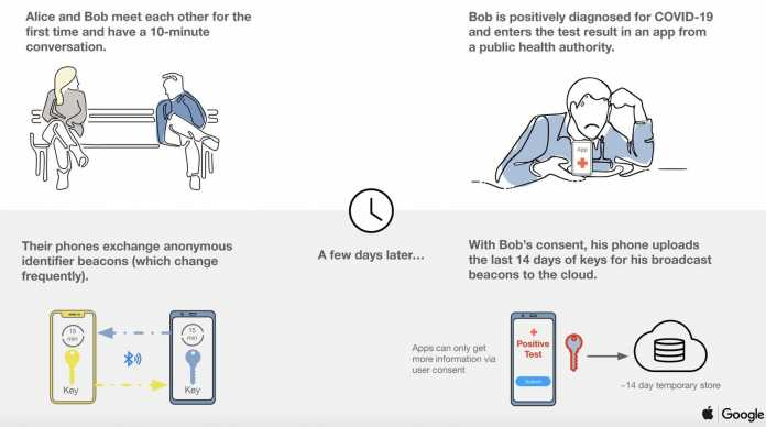 iOS und Android: Corona-Tracking-Schnittstelle als Beta