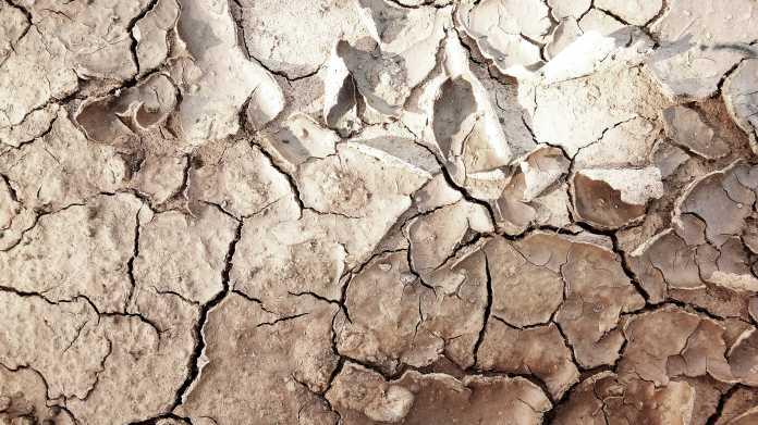 Ein Drittel der Weltbevölkerung könnte 2070 unter großer Hitze leiden