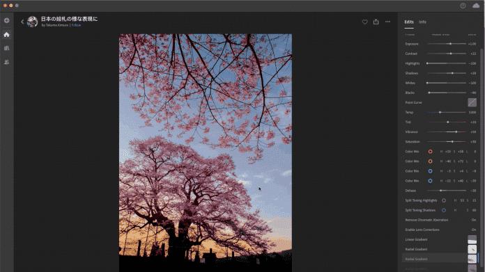 Adobe Creative Cloud: Updates für Photoshop und Lightroom
