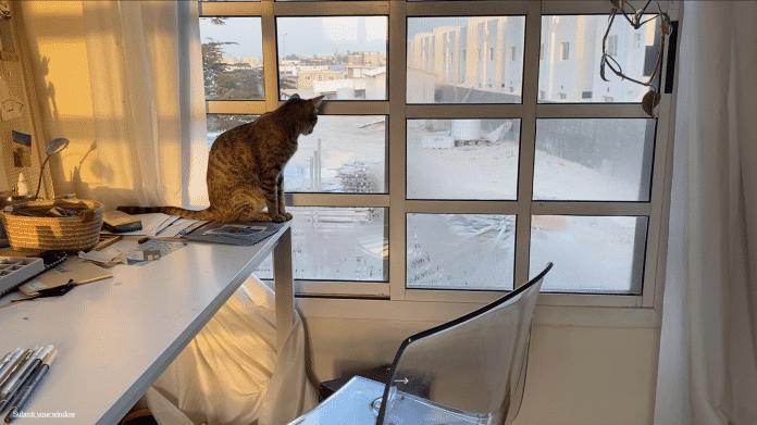 Die Wohnungen anderer Leute – mit WindowSwap aus fremden Fenstern schauen