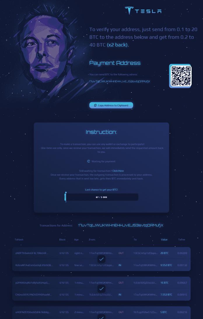 Dunkle Webseite mit Tesla-Logo und Musk-Konterfei