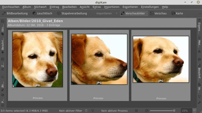 Digikam 7.0: Gesichtserkennung kommt auf den Hund