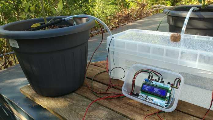 Neben einem grauen Pflanzenkübel steht eine durchsichtige, mit Wasser gefüllte Plastikkiste und davor ein kleines Display. Ein Wasserschlauch führt Wasser aus dem Tank in den Topf.