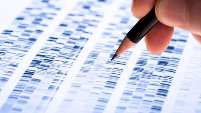 Von Excel in Datumsangaben umgewandelt: Dutzende Gene umbenannt