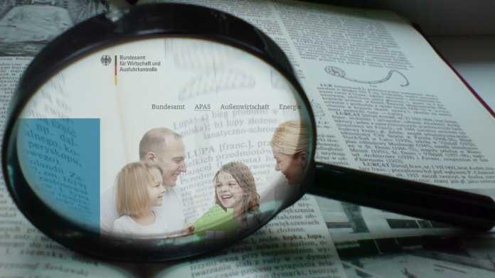 Nach Cross-Site-Scripting-Lücken: BaFa will BSI mit Website-Check beauftragen