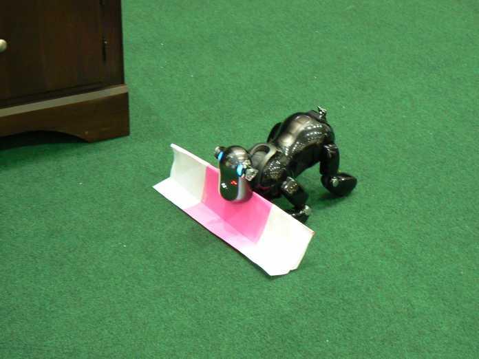 Braves Roboterchen: Ein Aibo apportiert im Wettbewerb RoboCup@home 2007 in Atlanta.