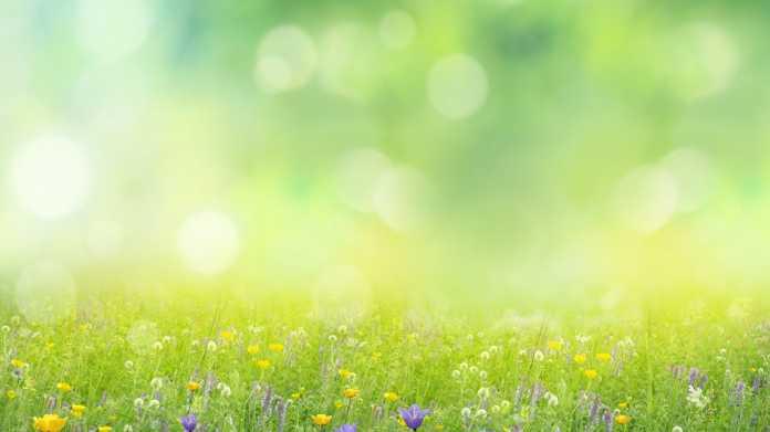 Microsoft schaltet den Dienst Azure Spring Cloud offiziell frei