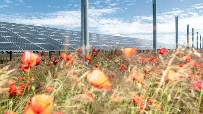 Solarparks ohne Subventionen - ein Lichtblick in der Energiewende