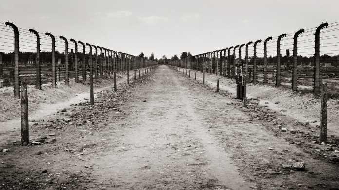 Missing Link: Die Tage der Befreiung