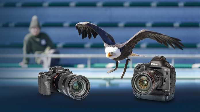 Profi-Systemkameras im Test: Canon EOS-1D X Mark III und Sony A9 II