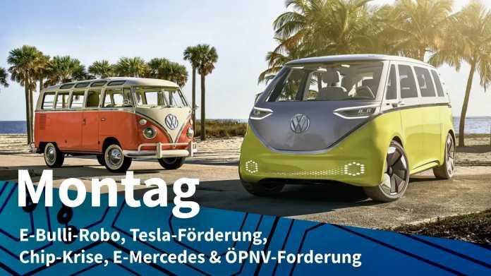 VW Bulli und ID.Buzz unter Palmen