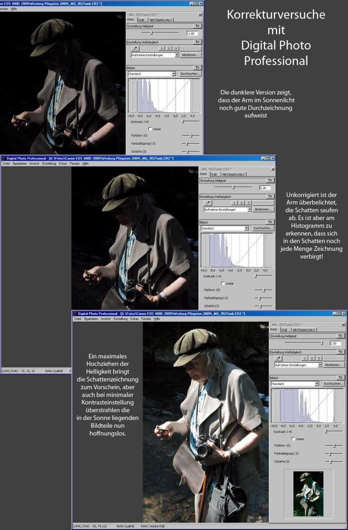 """Korrekturversuche mit Digital Photo Professional: Die RAW-Datei enthält in den Lichtern und Schatten wesentlich mehr Details, als bei einer """"Standardentwicklung"""" sichtbar werden."""