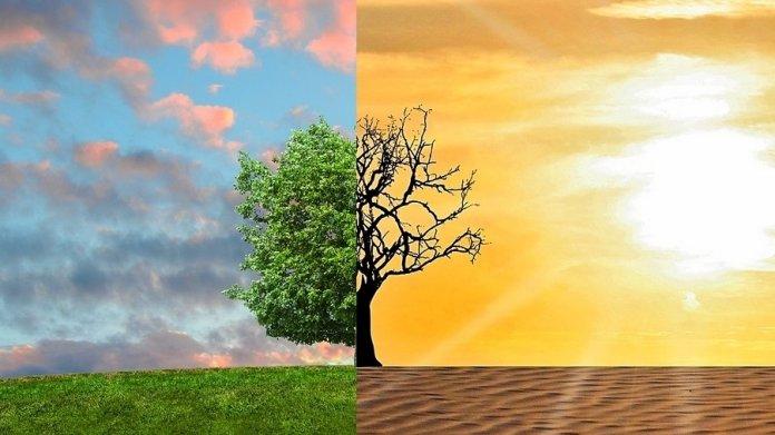 """UN-Klimakonferenz: """"Klimaschutz ist die Überlebensfrage der Menschheit"""""""