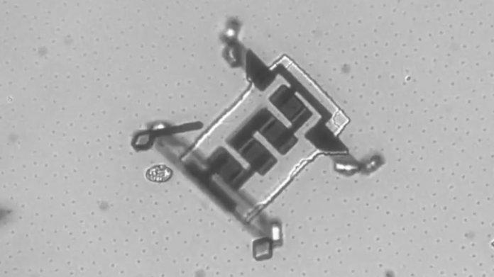 Vierbeinige Mikroroboter krabbeln durch den Körper