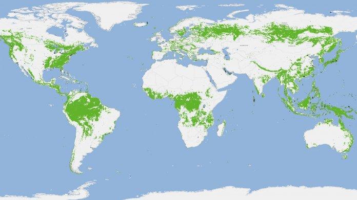 Tandem-X des DLR: Erste einheitliche Waltkarte der Erde