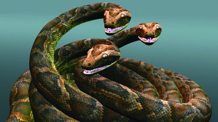 Ein Kopf ist nicht genug: Facebooks Hydra ist ein Framework für Python