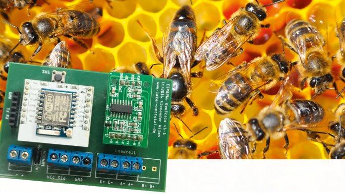 Der IoT-Bienenstock