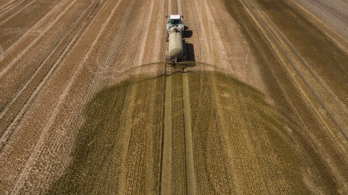Landwirtschaft: Mist statt Mais