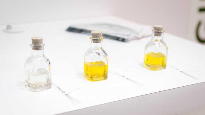 Biotech-Unternehmen plant Parfüm auf der Grundlage ausgestorbener Pflanzen