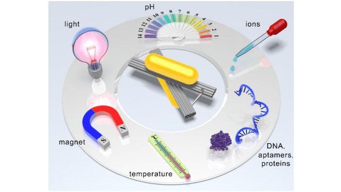 Experimente mit DNA-Origami zeigen großes Potenzial für Nano-Systeme