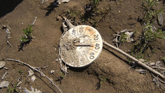 Forscher: Todesfälle durch zunehmende Hitzewellen lassen sich relativ leicht verhindern