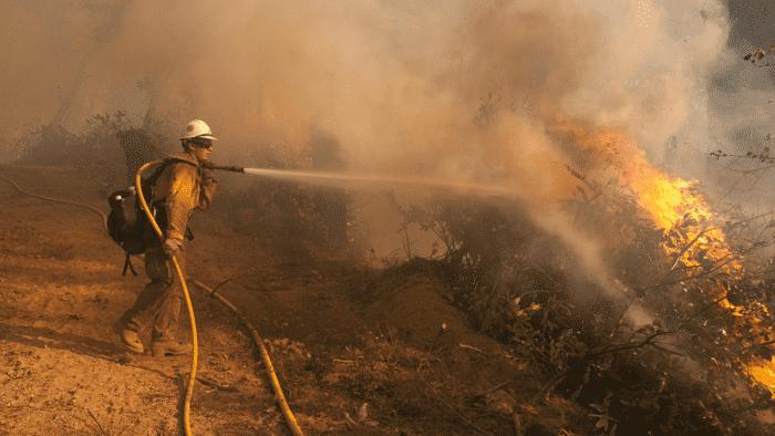Computermodelle simulieren Waldbrände