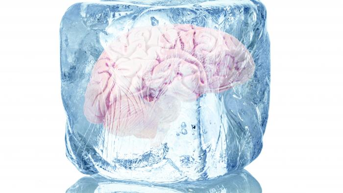 Eisige Kälte rettet Leben