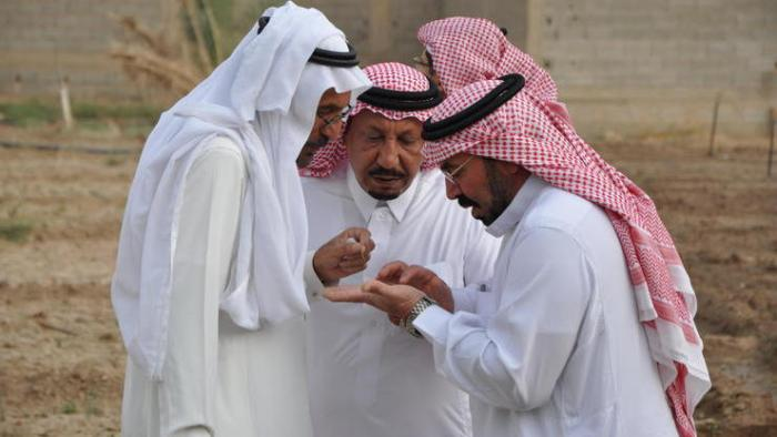 Saudi-Arabien geht schärfer gegen Kritik via Twitter vor