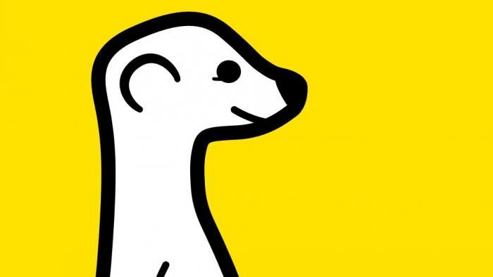 Twitter bremst Video-App Meerkat aus