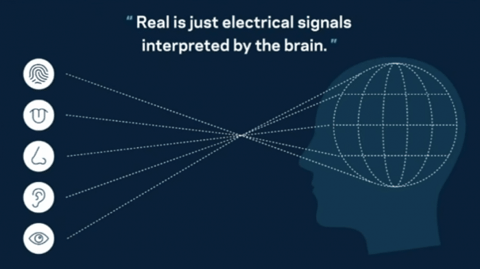 Facebook forciert Virtual Reality