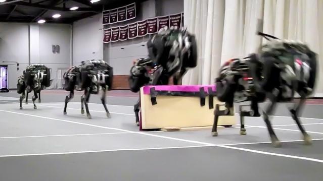 Roboter Cheetah springt