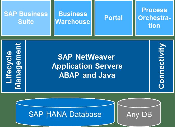 Netweavers Position im SAP-Umfeld