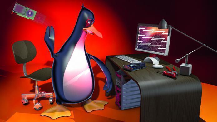 Kommentar: Linux ist und bleibt ein Gaming-Desaster