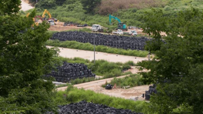 Greenpeace: Folgen des Super-GAU von Fukushima für die Umwelt dauern Hunderte Jahre
