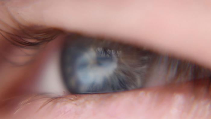 Gentechnik soll Blinde wieder sehen lassen